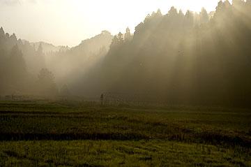 木枯らしの朝.jpg