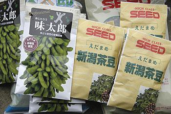 枝豆の種.jpg