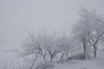 吹雪10.1.13.jpg
