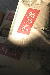 米袋08.10.10.jpg
