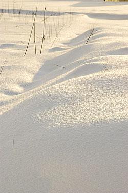 雪晴れ.jpg